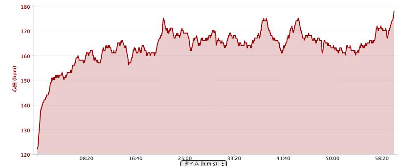 ハルヒル心拍グラフ