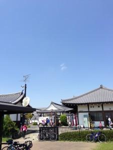 江戸サイはよく走ってたけど実はここまで来たのは初めて