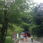 新雛鶴トンネルは工事中でした