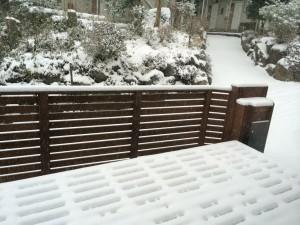 朝の積雪はまだカワイいもんでした