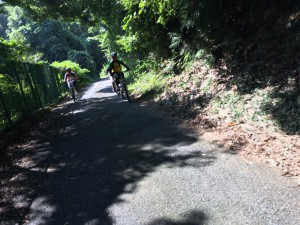 これはトレイルへ移動する登り。レンタルMTBに慣れる前での登りはきつかったようです
