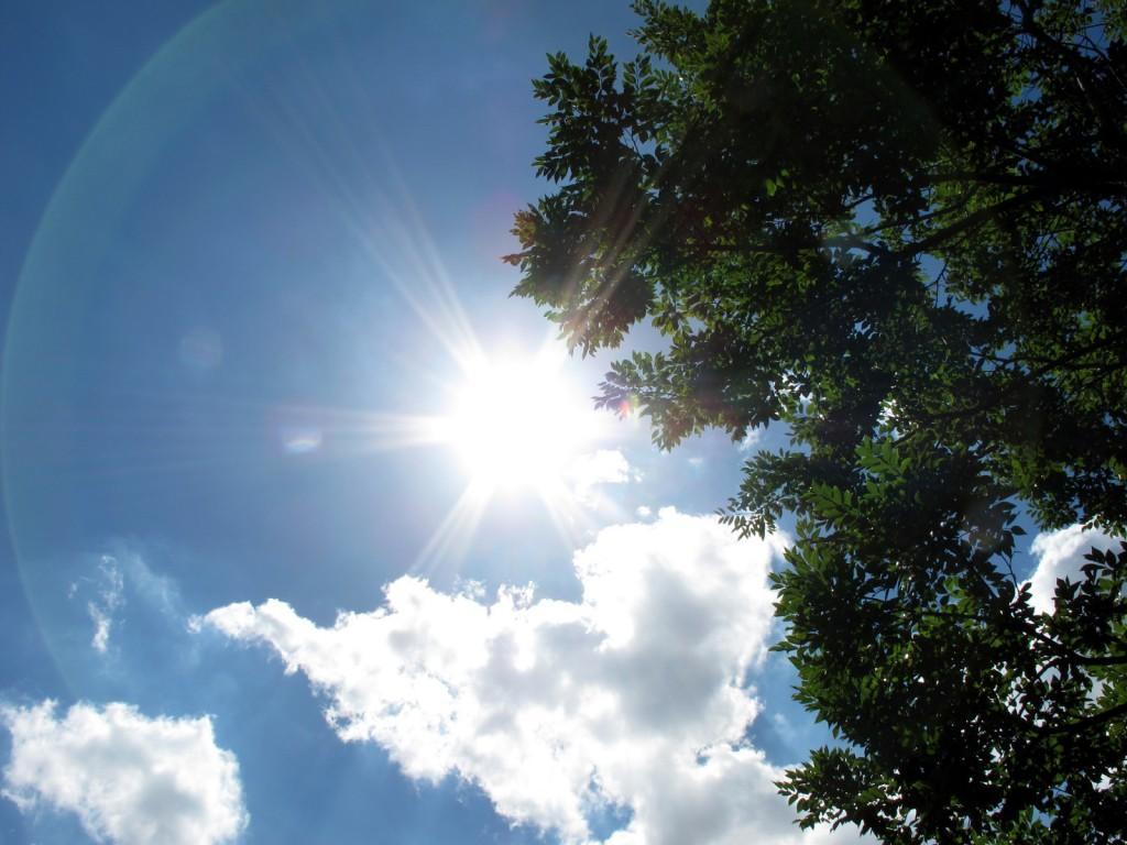 ぎらつく太陽